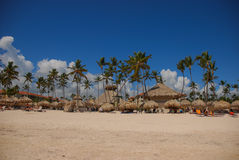 Exotischer carribean Strand, Punta Cana stockfoto