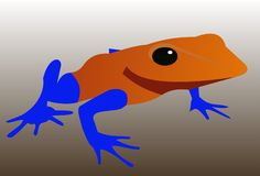 Exotischer Frosch 3 Stockfotografie
