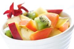 Exotischer Fruchtsalat stockfotografie