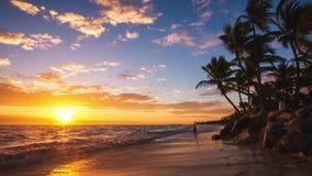 Exotischer Strand in der Dominikanischen Republik, punta cana stock video