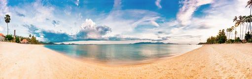Exotischer tropischer Strand. stockfotografie