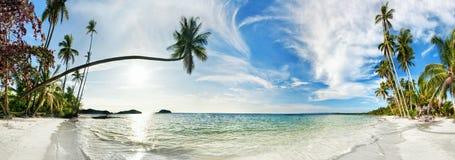Exotischer tropischer Strand. stockbild