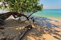 Exotischer tropischer Strand lizenzfreie stockbilder