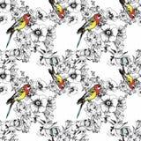 Exotischer Vogelpapagei mit buntem nahtlosem Muster der Blumen Dekoratives Bild einer Flugwesenschwalbe ein Blatt Papier in seine Stockfoto