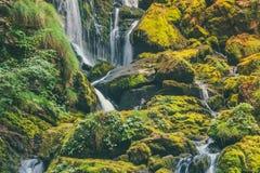 Exotischer Wasserfall im Dschungel Lizenzfreies Stockbild