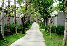 Exotischer Weg in Bali, Indonesien Stockfotografie