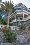 Exotisches Landhaus Palmtree stockbild