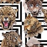 Exotisches Muster des wilden Tieres des Leoparden in einer Aquarellart stock abbildung