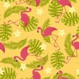 Exotisches nahtloses Muster der Flamingos Stockbilder