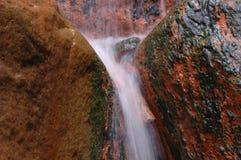 Exotisches natürliches Pool in den Azoren Stockfotografie