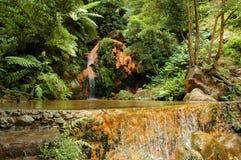 Exotisches natürliches Pool in den Azoren Stockfotos