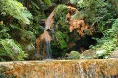 Exotisches natürliches Pool in den Azoren Lizenzfreies Stockbild