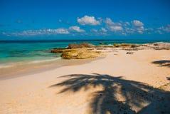 Exotisches Paradies Tropische Rücksortierung Karibisches Meeranlegestelle nahe Cancun Mexiko-Strand tropisch in Karibischen Meere lizenzfreie stockfotografie