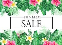 Exotisches und tropisches Hintergrunddesign des Sommers Lizenzfreies Stockbild