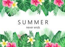 Exotisches und tropisches Hintergrunddesign des Sommers Lizenzfreie Stockfotos