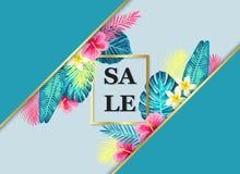 Exotisches und tropisches Hintergrunddesign des Sommerschlussverkaufs Stockbilder