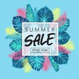 Exotisches und tropisches Hintergrunddesign des Sommerschlussverkaufs Lizenzfreie Stockfotos