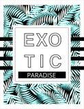 Exotisk bakgrund med gömma i handflatan För T-tröjadiagram för sommar tropisk pr Arkivbilder