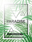 Exotisk bakgrund med palmblad och ram för designhipster Arkivbild