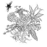 Exotisk bukettuppsättning med att flyga för kryp och för fel Blommor blom- royaltyfri illustrationer