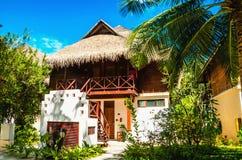 Exotisk bungalow med högväxta palmträd royaltyfri fotografi
