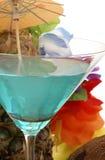 exotisk drink Royaltyfri Fotografi
