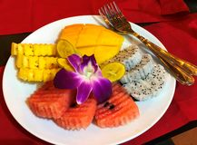 Exotisk färgrik variation av tropiska frukter arkivbilder