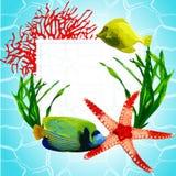 Exotisk fisk i den undervattens- världen royaltyfri illustrationer