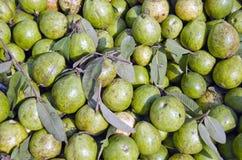 Exotisk fruktgrupp för ny guava i asiatisk gatamarknad, Indien Arkivfoton