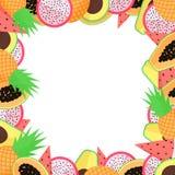Exotisk fruktram för vektor med papayaen, avokadot, ananas, drakefrukt och watermellon stock illustrationer