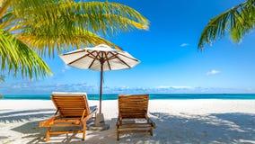 Exotisk loppdestination, dagdrivare och paraply under palmbladet Lyxigt tropiskt strandlandskap arkivfoto