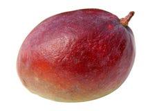exotisk mango Arkivbilder