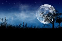 Exotisk natt stock illustrationer