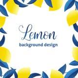 Exotisk sommar och vändkretsbakgrundsdesign Sammansättning med citroner och sidor Universellt kort för vektor med stället för stock illustrationer