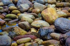 Exotisk stenig strand i Sydafrika Royaltyfri Bild