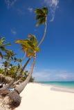 exotisk strand Fotografering för Bildbyråer