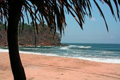 exotisk strand Royaltyfri Foto