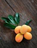 Exotisk thailändsk frukt, Marian plommon Fotografering för Bildbyråer
