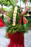 exotisk tillbaka dansare Royaltyfri Fotografi