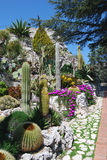 exotisk trädgård arkivbild