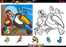 Exotisk uppsättning för sida för fågeltecknad filmfärgläggning royaltyfri illustrationer