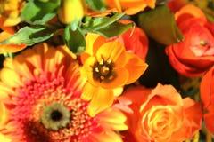 exotiska blommor för bukett royaltyfria foton