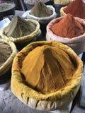 Exotiska färgrika kryddor i varma färger Arkivbilder