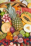 Exotiska frukter Arkivbild