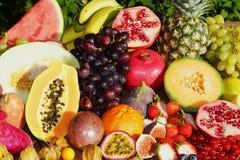 Exotiska frukter Arkivfoto