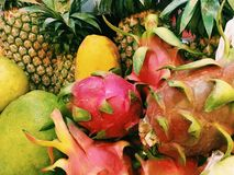 exotiska frukter Royaltyfria Foton