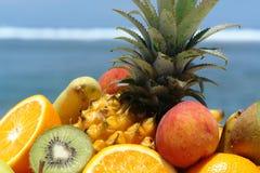 exotiska frukter för sammansättning Fotografering för Bildbyråer
