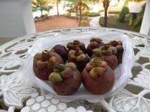 Exotiska frukter i Cambodja Fotografering för Bildbyråer
