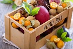 Exotiska frukter i en spjällåda Royaltyfri Fotografi