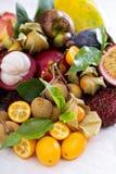 Exotiska frukter på vitbakgrund Royaltyfri Bild